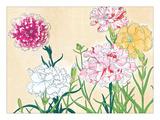 Flower Study I Giclee Print