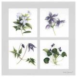 Les Fleurs Violettes Posters by Vincent Jeannerot