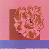 Fragrance II Kunstdrucke von Alie Van de Velde
