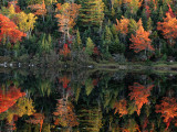 A Shore Lined with Trees in Autumn Hues Casting Reflections in Water Photographic Print by Raymond Gehman
