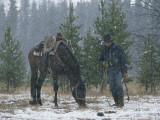Snow Falls on a Cowboy and His Horse Photographic Print by Annie Griffiths