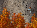 A Female Climber on a Cliff Wall Photographic Print by Bill Hatcher