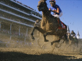 Close Action Shot of Horses Racing in the Kentucky Derby Fotografisk tryk af Melissa Farlow