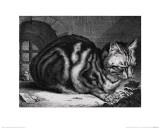 The Large Cat Giclée-Druck von Cornelis Visscher