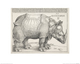 The Rhinoceros Reproduction proc&#233;d&#233; gicl&#233;e par Albrecht D&#252;rer