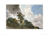 A Study of Clouds and Trees Giclee Print by John Constable