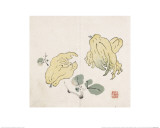 Three Buddha's Hand Fruits Giclee Print by Gao You