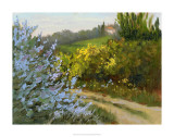 Rosemary by the Road Giclee Print by Mary Jean Weber