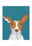 Pet Portraits II Prints by Chariklia Zarris