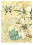 Small Hibiscus Medley I Prints by Jennifer Goldberger