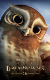 The Legend of the Guardians: The Owls of Ga'Hoole - Gylfie Masterprint