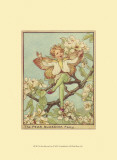 The Pear Blossom Fairy Prints