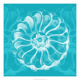 Chromatic Rosette III Print