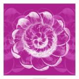 Chromatic Rosette I Giclee Print