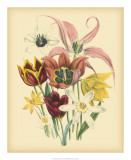 Garden Bouquet IV Giclee Print by Jane W. Loudon