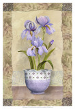Spring Iris Art by Abby White