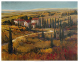 Tuscany II Posters by Tim O'toole