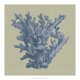 Chambray Coral I Giclee Print