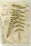 Fern Fresco II Giclee Print by Edward Lowe