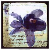 Blooming Purple II Prints