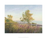 Highlands, Santa Monica, California Premium Giclee Print by Michael G. Miller