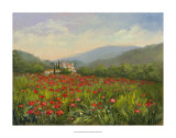 Umbrian Poppy Field Giclee Print by Mary Jean Weber