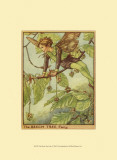 The Beech Tree Fairy Print