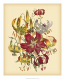 Garden Bouquet III Giclee Print by Jane W. Loudon