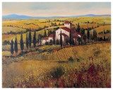 Tuscany III Prints by Tim O&#39;toole