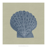 Chambray Shells IV Giclee Print