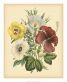 Garden Bouquet I Giclee Print by Jane W. Loudon
