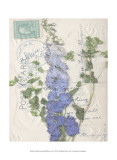 Small Postcard Wildflowers II 高品質プリント : ジェニファー・ゴルトベルガー