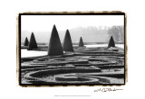 Palace of Versailles Garden I Art by Laura Denardo