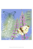 Butterflies Inspire I Prints by Jane Maday
