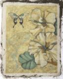Hibiscus Medley I Giclee Print by Jennifer Goldberger