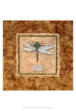 Dragonfly Prints by Abby White