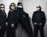 Chickenfoot Stretched Canvas Print