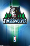 Timberwolves - Logo 2010 Photo