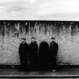 U2 Reprodukce na plátně