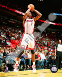 Chris Bosh 2010-11 Action Photo