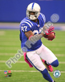 Reggie Wayne 2010 Action Photo