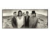 U2 - The Joshua Tree Stretched Canvas Print