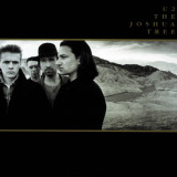 U2 - The Joshua Tree Stretched Canvas Print