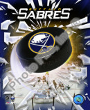 2010-11 Buffalo Sabres Team Logo Photo