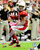 Larry Fitzgerald 2010 Action Photo