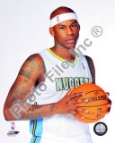 Al Harrington 2010-11 Posed Photo