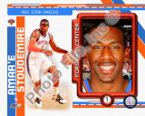 Amare Stoudemire 2010-11 Studio Plus Photo