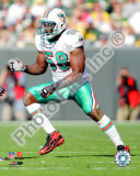 Karlos Dansby 2010 Action Photo
