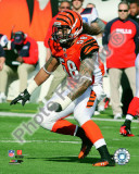 Rey Maualuga 2010 Action Photo