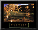 Success: Golf II Prints